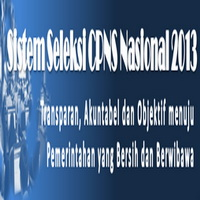 Pendaftaran Online CPNS 2013 Sumatera Selatan
