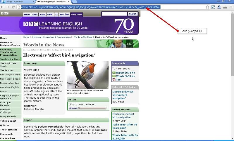 Salin (Copy) URL Halaman WEB Yang Akan Diterjemahkan Menggunakan Google Translate