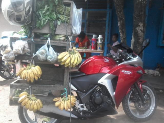 Gambar Honda CBR 250 Buat Jualan Buah dan Sayur