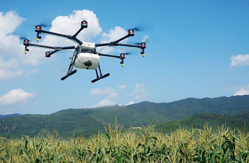 Dron Untuk Petani Menyemprotkan Cairan Pupuk.