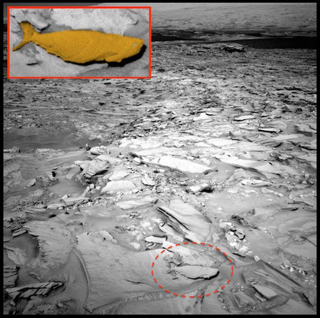 Foto NASA Memperlihatkan Sebuah Objek Menyerupai Ikan Raksasa