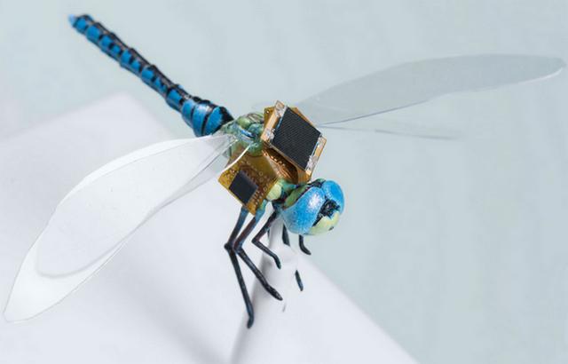 Ransel Generasi Pertama Capung DragonflEye