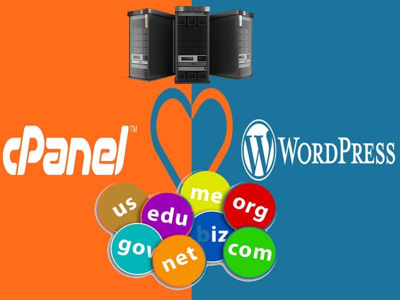 Hosting Terbaik Untuk WordPress – Gratis Domain dan SSL Cpanel