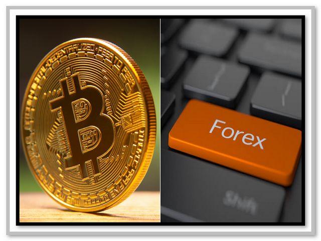 Cara Trading Online untuk Trader Pemula